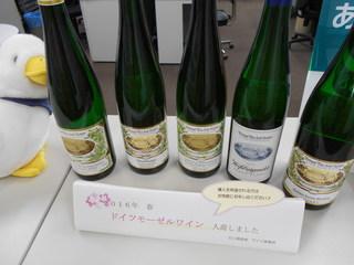 2016春ワイン入荷.JPG
